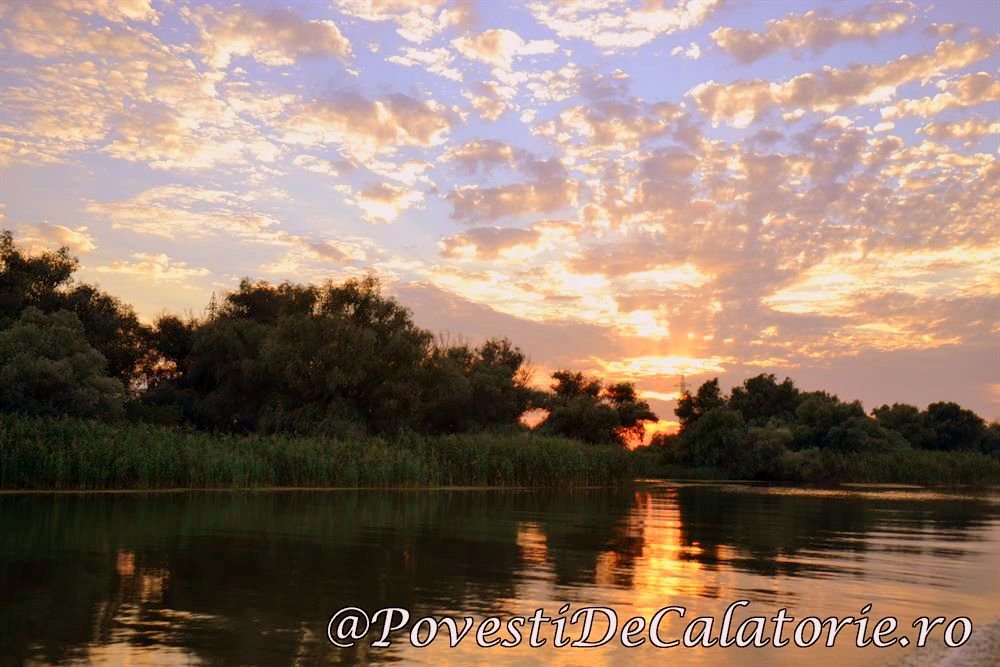 Festivalul Borsului de Peste Delta Dunarii (653)