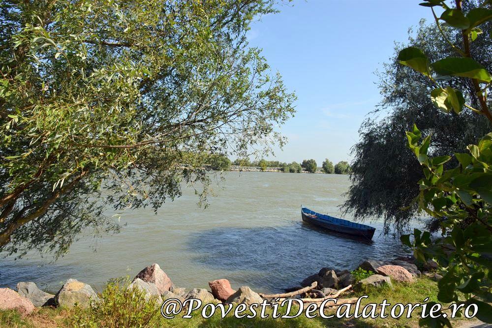 Festivalul Borsului de Peste Delta Dunarii (830)
