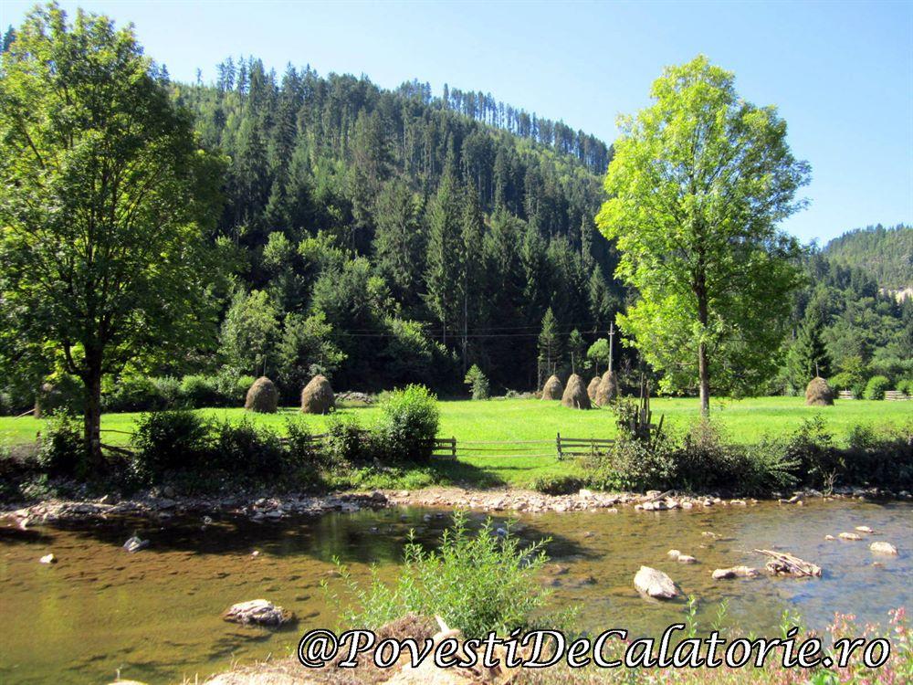 Targul National de Turism Rural Albac (687)
