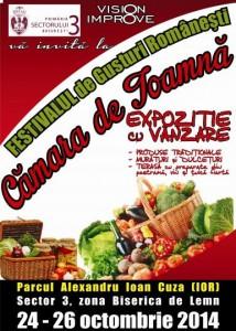 festivalul-de-gusturi-romanesti-camara-de-toamna-i105108