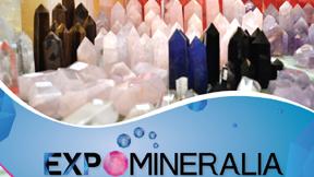 Expo_Mineralia_2014.11