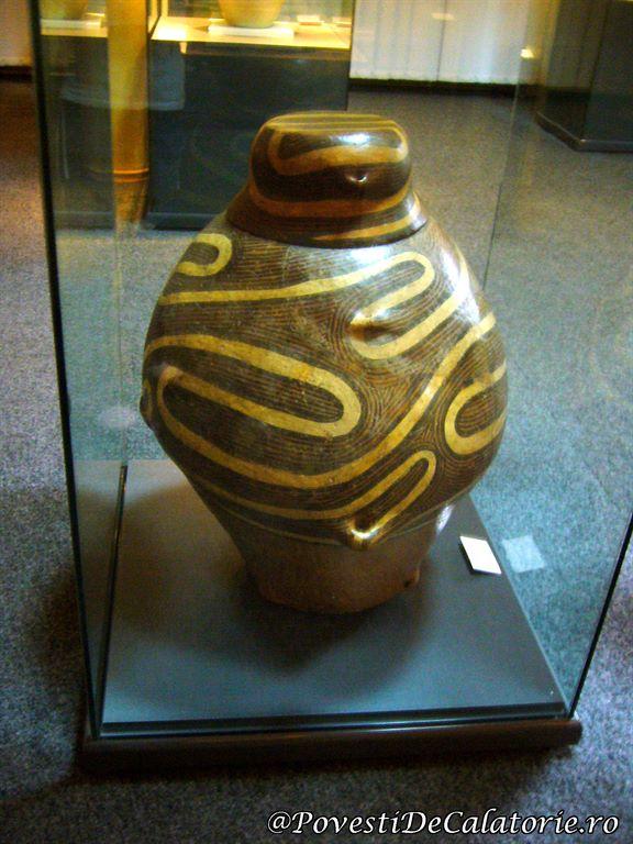 Muzeu Cucuteni (5)