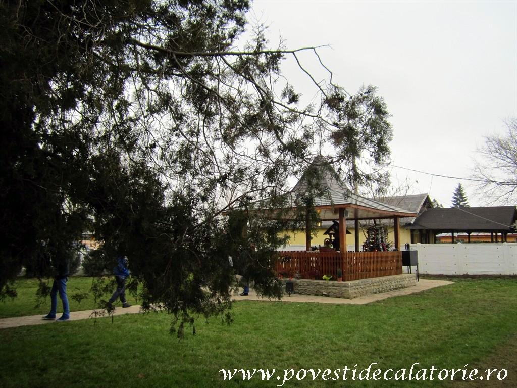 Casa Comana (240)