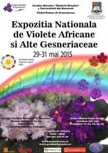 expozitia-de-violete-africane-si-alte-gesneriaceae-i113247