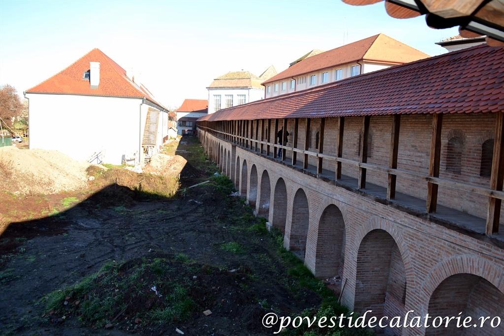 Targu Mures (6)