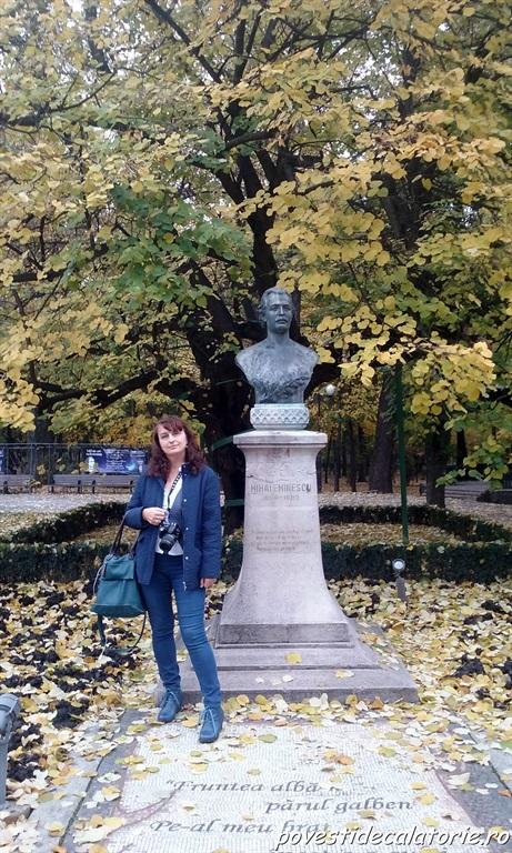 Iasi Paris (15)