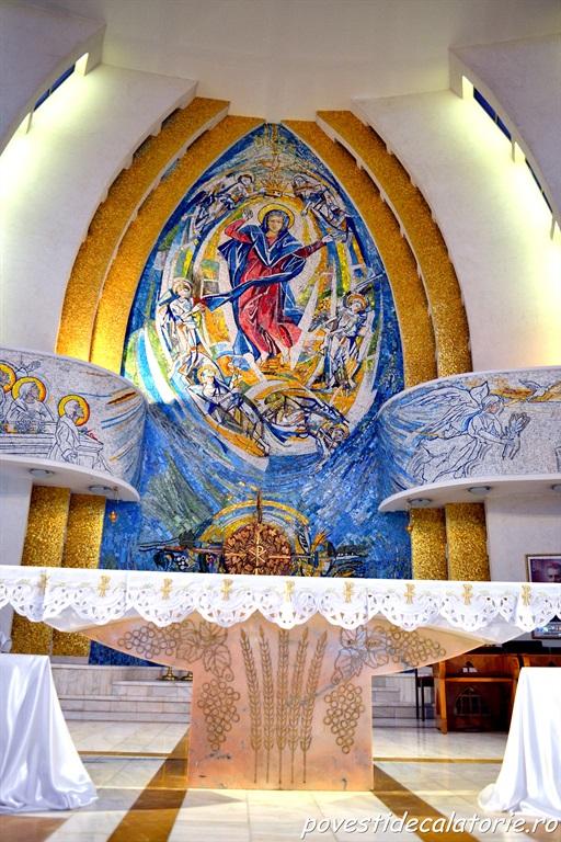 Catedrala Romano Catolica Iasi (19)