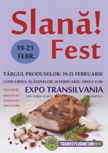 banner_slanafest-szalonnafeszt-baconfest-2016