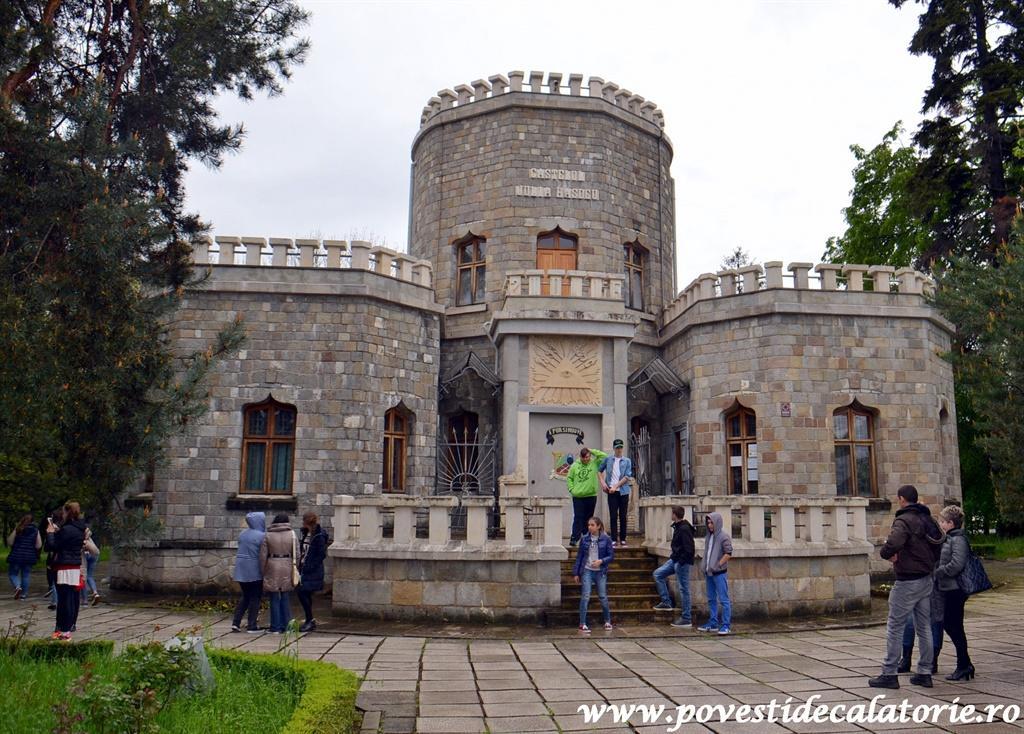 Castelul Iulia Hasdeu (2)