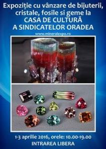 mineral-expo-oradea-turmaline-electrizante-i123836