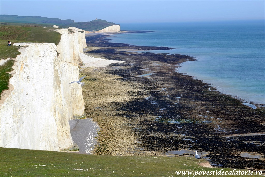 seven sisters (122)