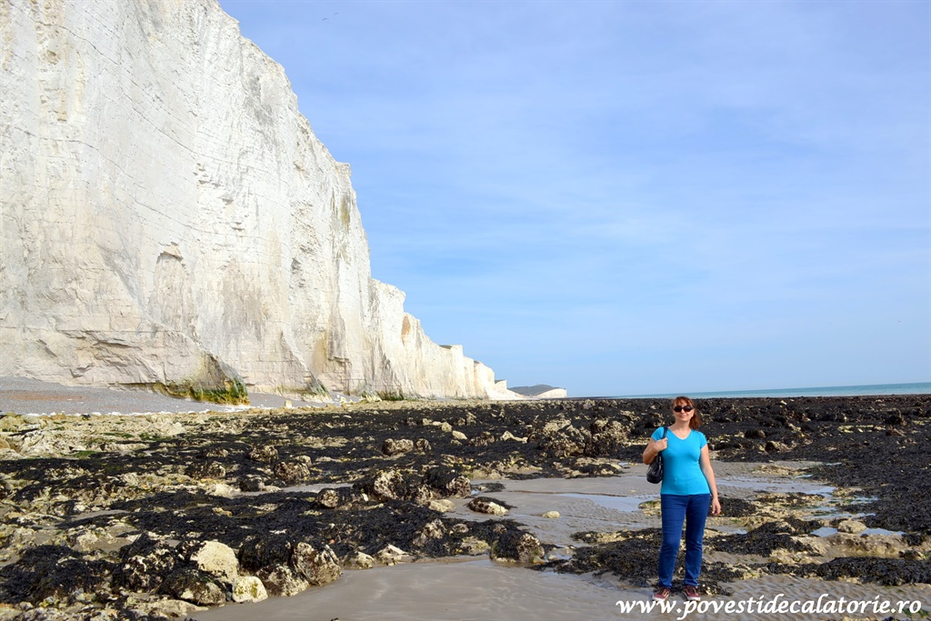 seven sisters (79)