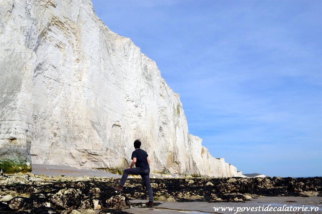seven sisters (86)