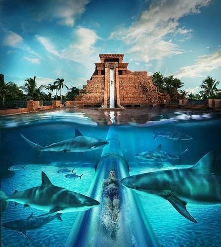 aquaventure-water-park
