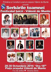 festivalul-tuicii-2016-cine-canta