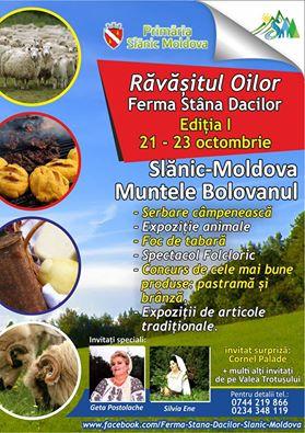 slanic-moldova
